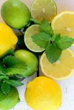 Lemons and lime Stock Photos