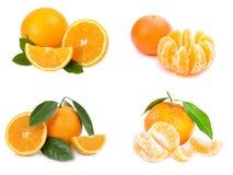 lemons lime orange white Arkivfoton