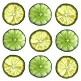 Lemons and Limes. On white background Royalty Free Stock Photography