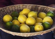 Lemons and limes. Basket full of lemons and limes Stock Images