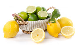 Lemons and limes in a basket Stock Images