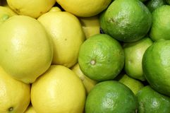 Lemons and limes side-by-side royalty free stock photos