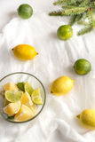 Lemons and limes with fir branch on the white background Royalty Free Stock Photos