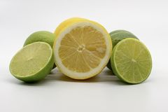 A hand full of lemons and limes royalty free stock image