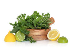 Lemons, Limes and Herb Leaves stock image