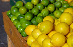 Lemons and limes at market Royalty Free Stock Images