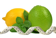 Lemons and Limes Royalty Free Stock Photos