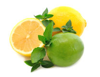 Lemons, limes and mint Stock Image