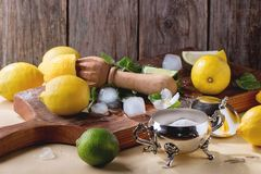 Lemons, limes and mint Royalty Free Stock Images