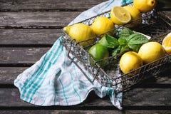 Lemons, limes and mint Stock Image