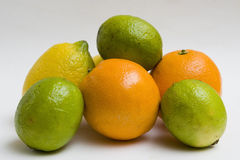 Lemons, limes and oranges Stock Image
