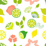 Lemons and limes print. Royalty Free Stock Photography