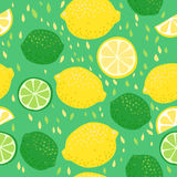 Lemons and Limes Seamless Pattern Stock Images