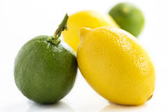 Lemons and limes  on white background. Stock Photo