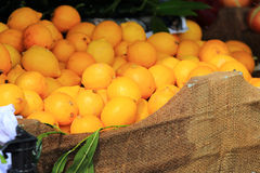 Lemons In Market Royalty Free Stock Photo