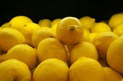 Lemons In Market Stock Image