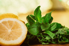 Lemons and mint on a dark wood background. tinting. selective focus Royalty Free Stock Images