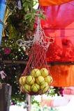 Lemons in net basket at highway shop Royalty Free Stock Images