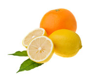 Lemons and an orange on green leaf Stock Images
