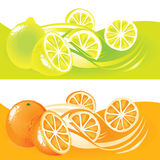 Lemons and Oranges Royalty Free Stock Photography