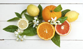 Lemons and oranges. With leaves and blossoms on a rustic wooden table royalty free stock photo