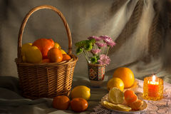 Lemons and oranges basket. Still life with lemons, oranges and tangerins Stock Photos