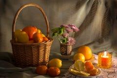 Lemons and oranges basket Stock Photos
