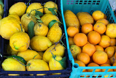 Lemons and oranges in baskets royalty free stock photos