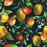 Lemons and oranges. Beautiful watercolor vector pattern with lemons and oranges stock illustration