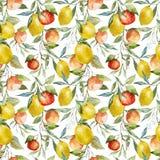 Lemons and oranges Stock Photos