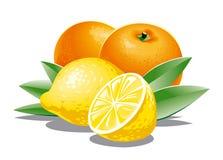 Lemons and oranges Royalty Free Stock Image