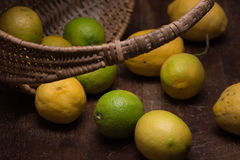 Lemons out of a basket Stock Images