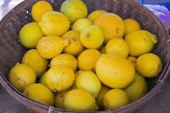Lemons at outdoor farmer's market Stock Photography