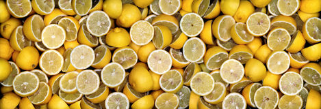 Lemons-panorama royalty free stock photo