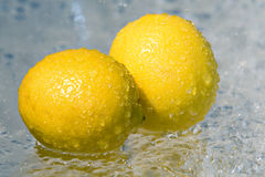 Lemons In The Rain. Lemons Covered With Water In The Rain Stock Image
