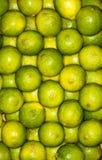 Lemons regular ordered pile background. Macro Royalty Free Stock Photo
