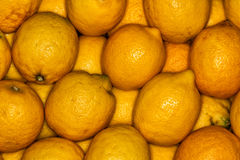 Lemons regular ordered pile background. Macro. Yellow lemons on a regular background. Photo taken with macro lens Stock Photography