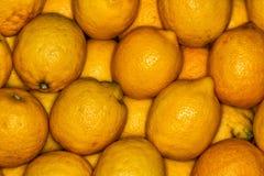 Lemons regular ordered pile background. Macro Stock Photography