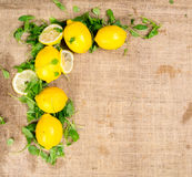 Lemons with salad positioned on the upper left side of the canvas Stock Photos