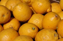 Lemons. For sale in a greengrocery Royalty Free Stock Image