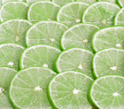 Lemons silice circle use for on  background Royalty Free Stock Photo