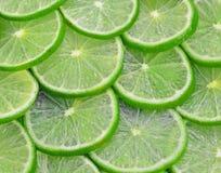 Lemons slicd circle use for on Background Stock Photo
