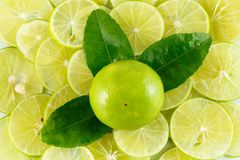 Lemons slice Stock Images
