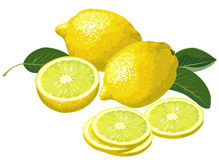 Lemons with slices. Illustration of lemons with slices and leaves Stock Photo