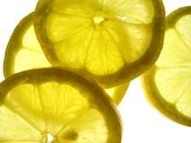 Lemons slices. Transparent yellow lemon slices Stock Images
