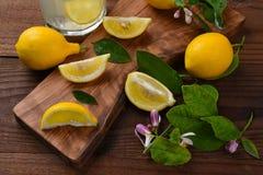 Lemons Still Life Stock Photos