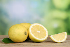 Lemons in summer with copyspace Stock Images