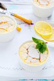 Lemons summer pudding with mint Royalty Free Stock Image