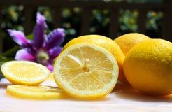 Lemons in the sunshine Stock Photography