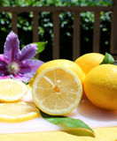 Lemons in the sunshine Royalty Free Stock Photos
